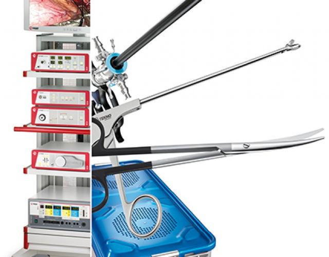 rigid endoscopy